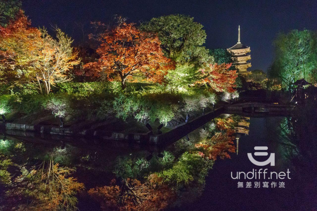 【京都賞楓景點】東寺 夜楓 》紅葉相伴絕美五重塔倒影 20
