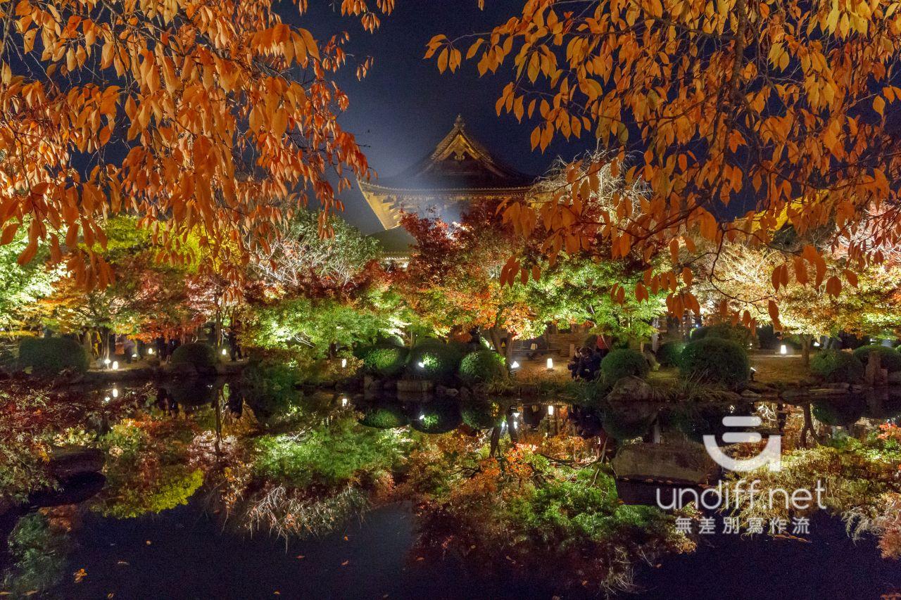 【京都賞楓景點】東寺 夜楓 》紅葉相伴絕美五重塔倒影 34