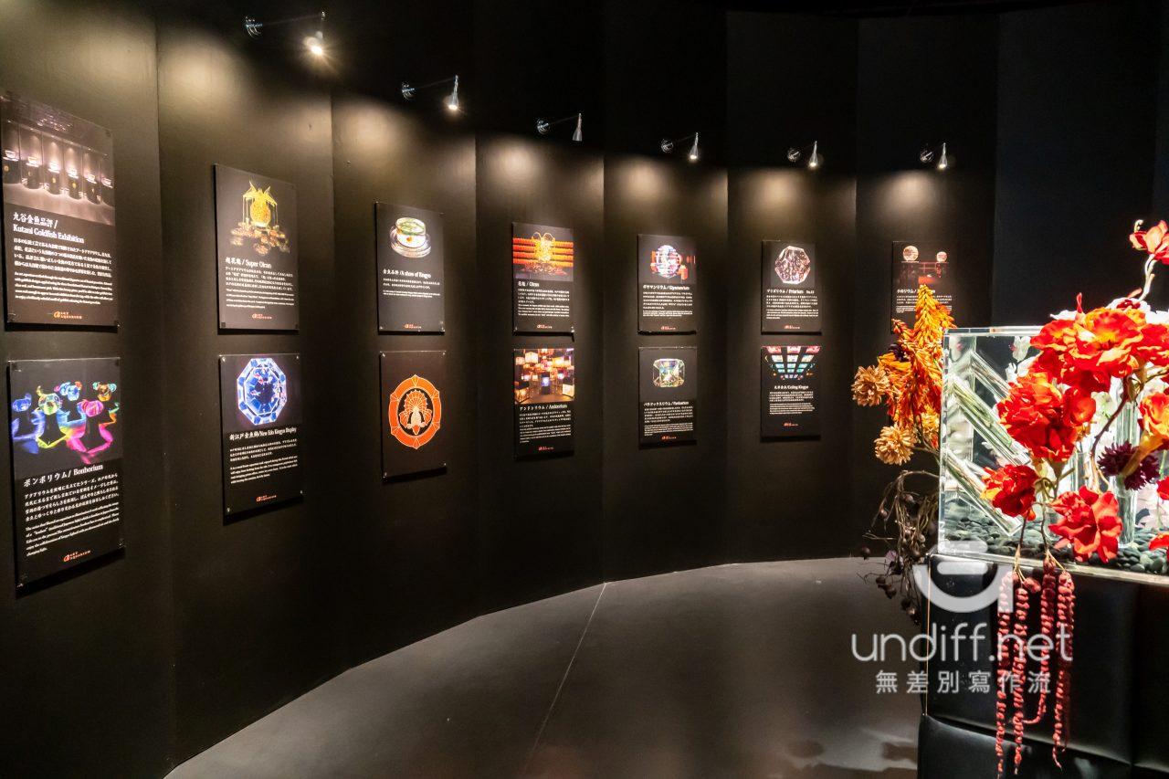 【熊本展覽】Art Aquarium 金魚展 》燈光與金魚共舞的奇幻展覽 24