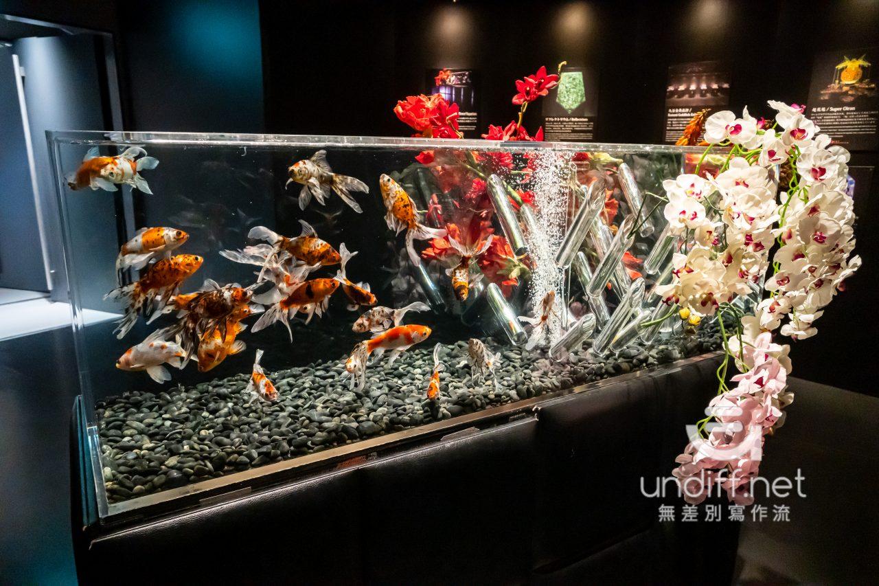 【熊本展覽】Art Aquarium 金魚展 》燈光與金魚共舞的奇幻展覽 22