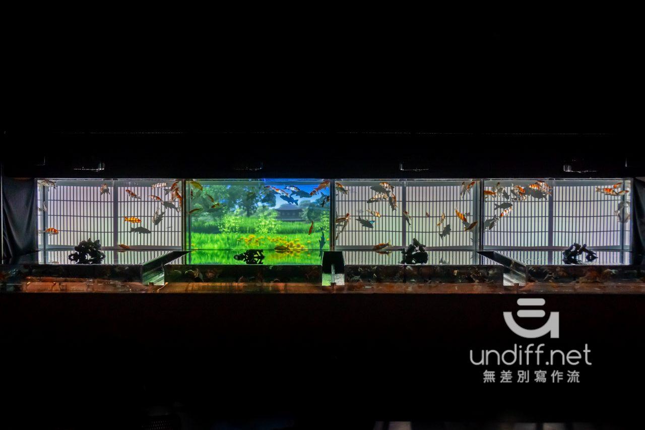 【熊本展覽】Art Aquarium 金魚展 》燈光與金魚共舞的奇幻展覽 28