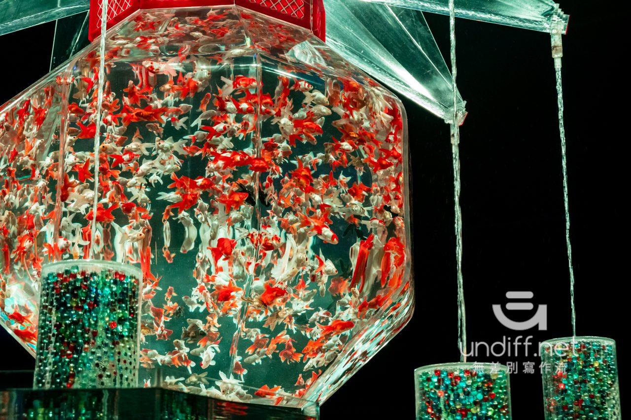 【熊本展覽】Art Aquarium 金魚展 》燈光與金魚共舞的奇幻展覽 54