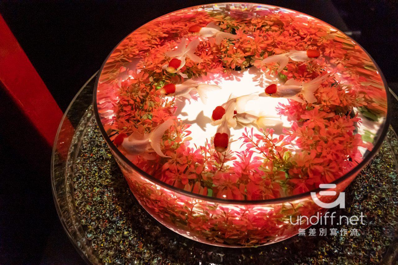 【熊本展覽】Art Aquarium 金魚展 》燈光與金魚共舞的奇幻展覽 72