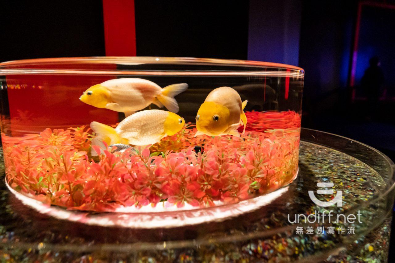 【熊本展覽】Art Aquarium 金魚展 》燈光與金魚共舞的奇幻展覽 74