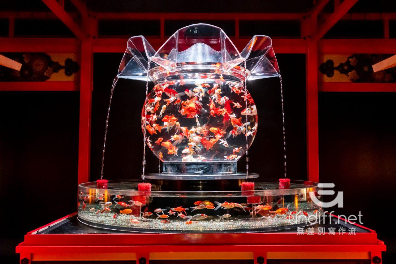 【熊本展覽】Art Aquarium 金魚展 》燈光與金魚共舞的奇幻展覽 78
