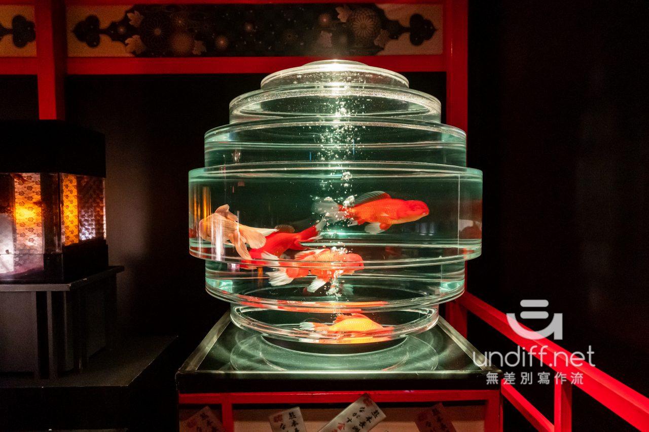 【熊本展覽】Art Aquarium 金魚展 》燈光與金魚共舞的奇幻展覽 84
