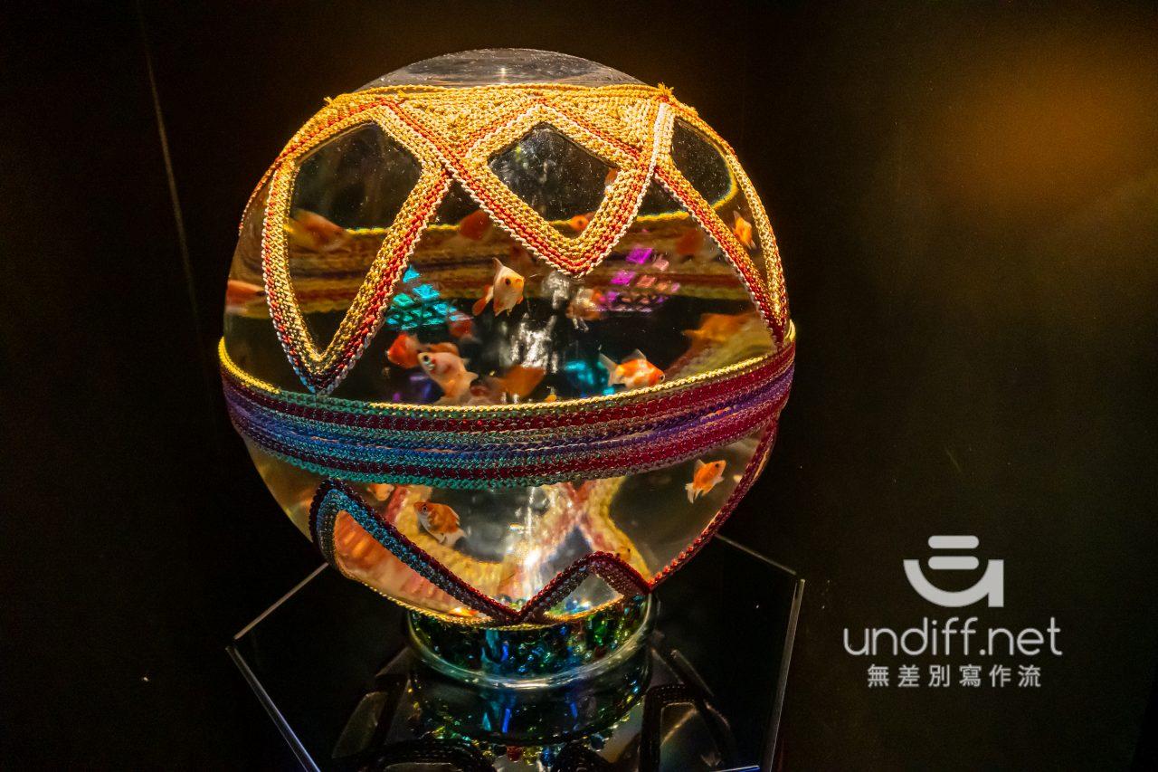 【熊本展覽】Art Aquarium 金魚展 》燈光與金魚共舞的奇幻展覽 88