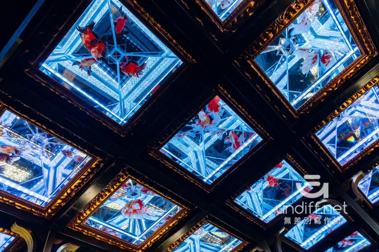 【熊本展覽】Art Aquarium 金魚展 》燈光與金魚共舞的奇幻展覽 90